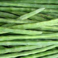 Health Benefits of Drumstick
